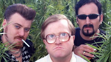 Trailer Park Boys - Series (seasons 1-7, all three movies) Sold to 'The Boys' in 2013.